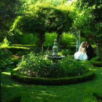 weddings_lotusteagarden_1